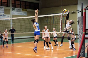 Volley Paladonbosco